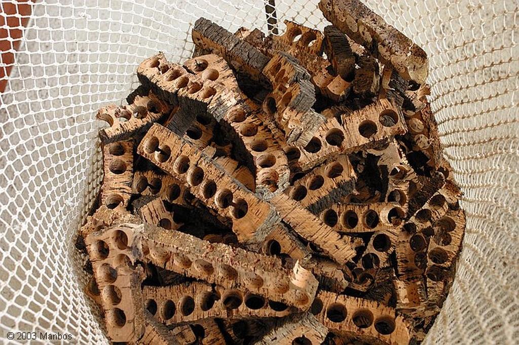 Silves Museo del corcho Arade