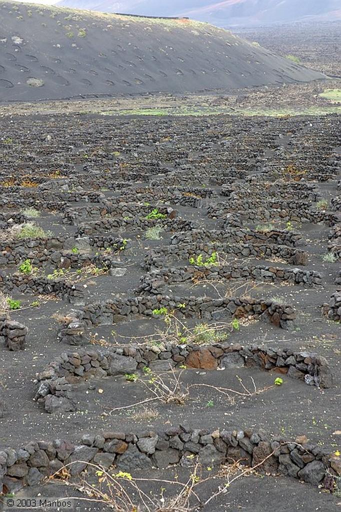 Lanzarote Cultivos en La Geria Canarias