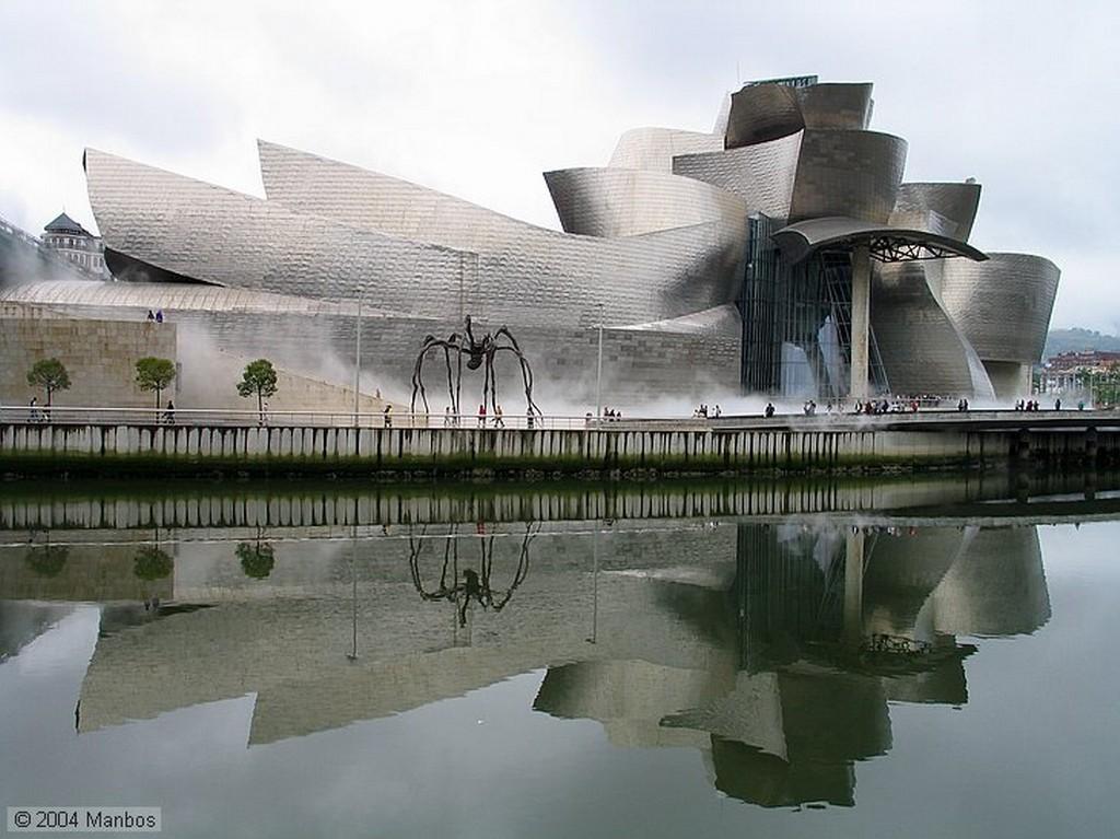Bilbao Araña y niebla Vizcaya