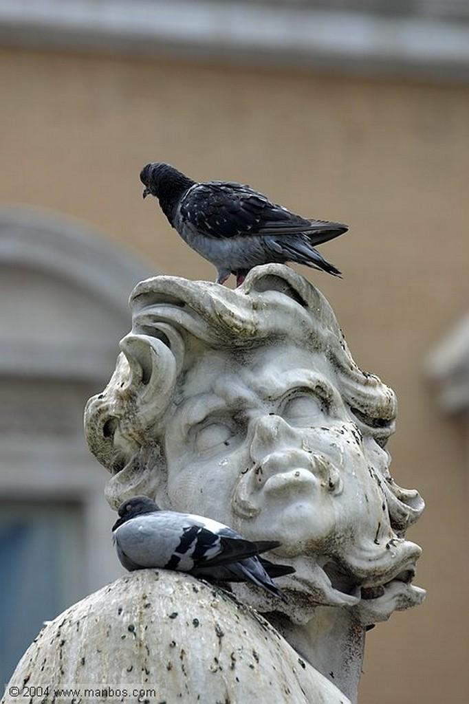 Roma Fontana dei Fiumi Roma