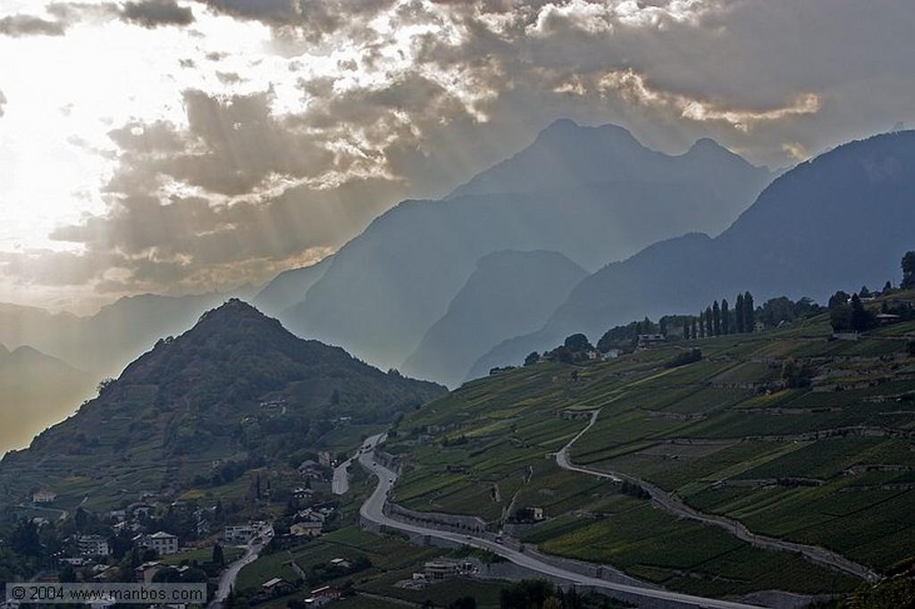 Sion Hojas de vid Valais