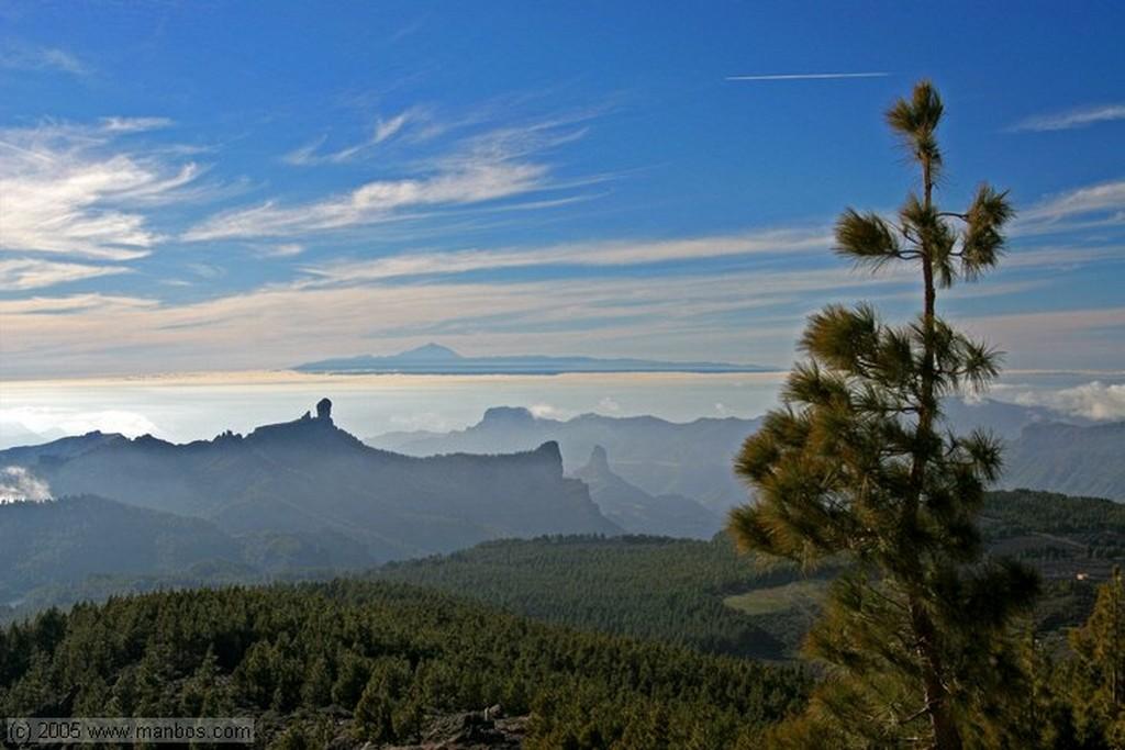 Gran Canaria Paseando por el muelle Canarias