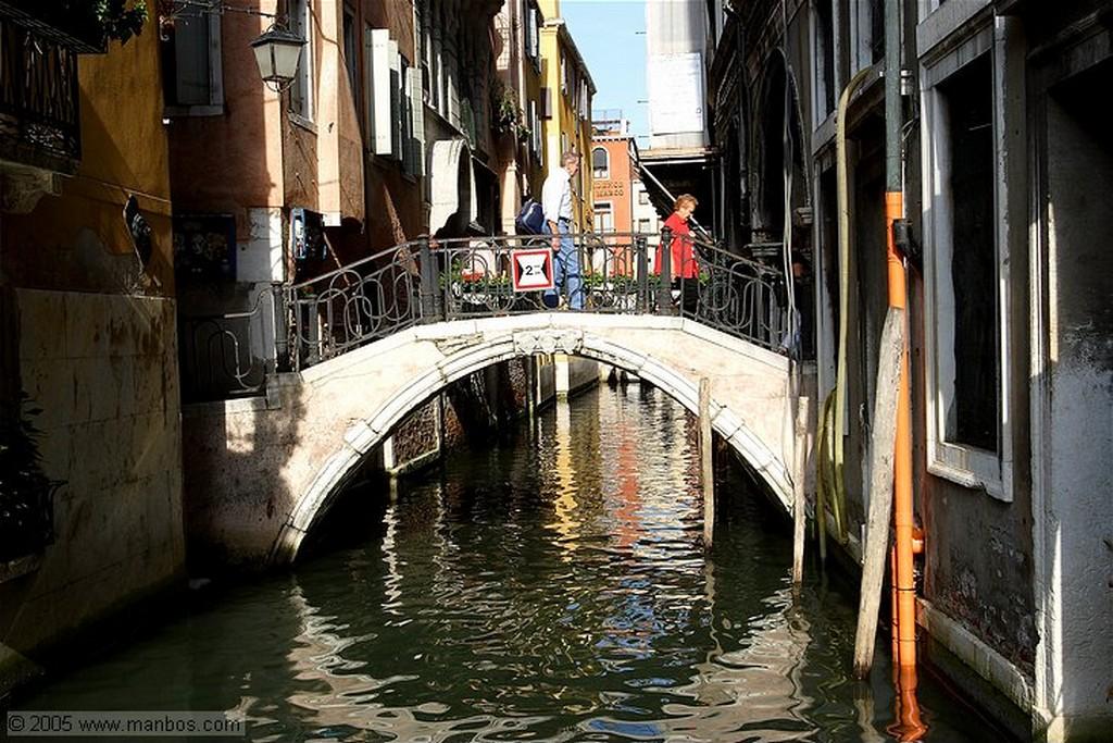 Venecia Las palomas de San Marcos Venecia