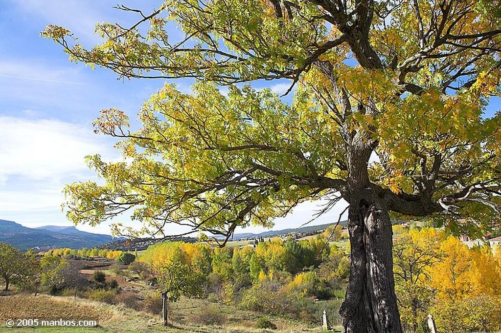 Sierra de Urbasa Navarra