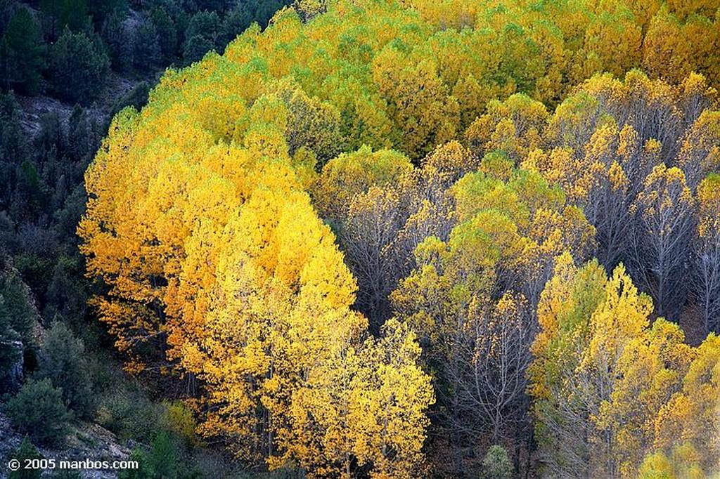 Parque Natural del Rio Lobos Parque Natural del Cañón del Río Lobos Soria