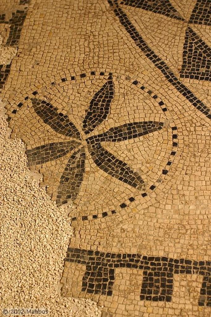 Segóbriga Museo - Objetos fálicos Cuenca