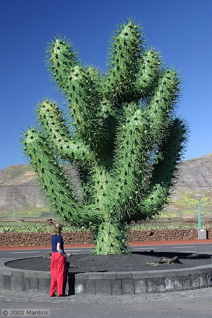 Lanzarote Jardín de Cactus Canarias