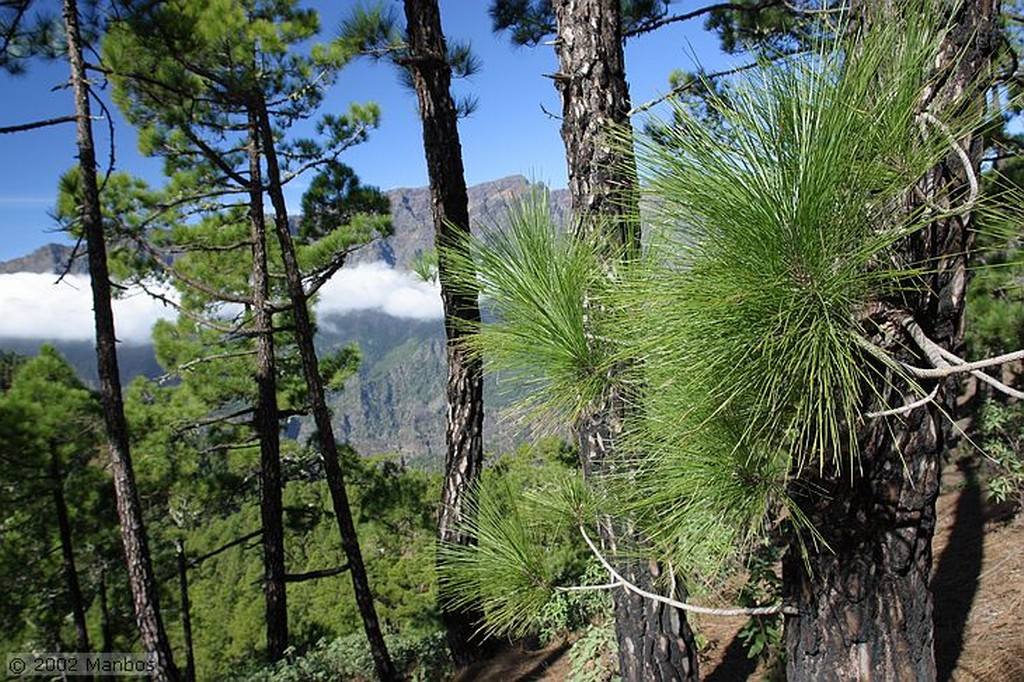 La Palma Caldera de Taburiente - La Cumbrecita Canarias