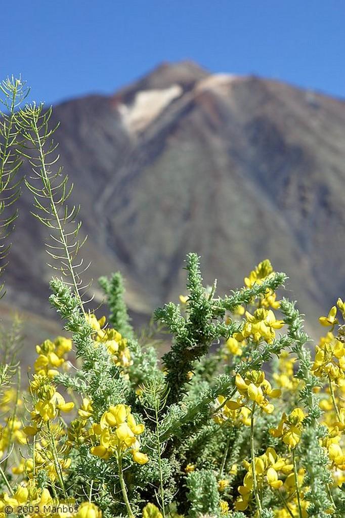 Tenerife Parador de Turismo Canarias