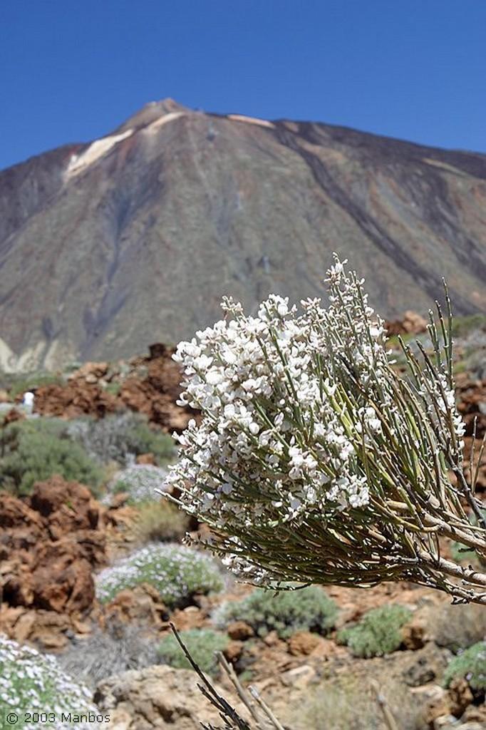 Tenerife Senderismo por las cañadas Canarias