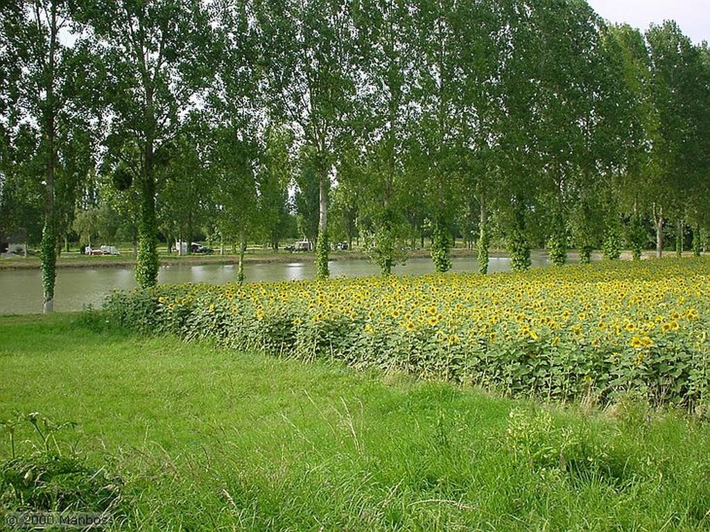 Valle del Loira Catapulta Pays de la Loira