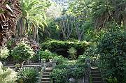 Jardin botanico de Gibraltar, Gibraltar, Reino Unido