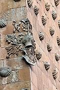 Casa de las Conchas, Salamanca, España