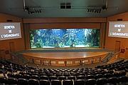 Foto de Ciudad de las Artes y las Ciencias, Oceanografic, España - Auditorio submarino - Mar Rojo