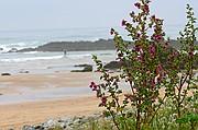 Playa de Nava, Playa de Nava, España