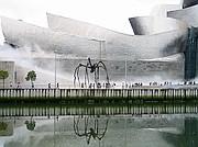 Camara Canon PowerShot G5 Museo Guggenheim BILBAO Foto: 4151