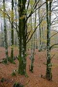 Sierra de Urbasa, Sierra de Urbasa, España