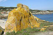 Islas Cies, Isla de Sálvora, España