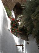 Camara Canon PowerShot G11 Lago Mar Lanzarote NAZARET Foto: 19077