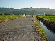 Camara Sony Cybershot F55 Paseo por los arrozales El Brosquil EL BROSQUIL Foto: 189