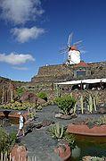 Jardín de Cactus, Lanzarote, España
