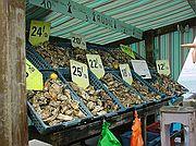 Camara Sony Cybershot F55 Mercado de ostras Viaje por Francia CANCALE Foto: 84