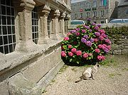 Foto de Bretaña, Francia