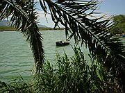 Camera Sony Cybershot F55 El Estany El Brosquil EL BROSQUIL Photo: 197