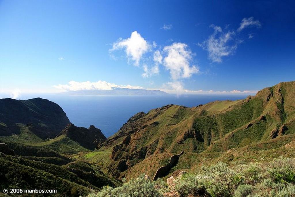 Tenerife Papas arrugadas con mojo picon Canarias