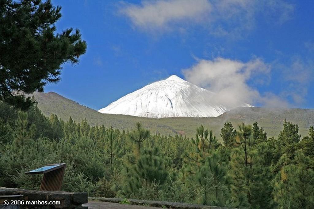 Tenerife La Rosa de Piedra Canarias