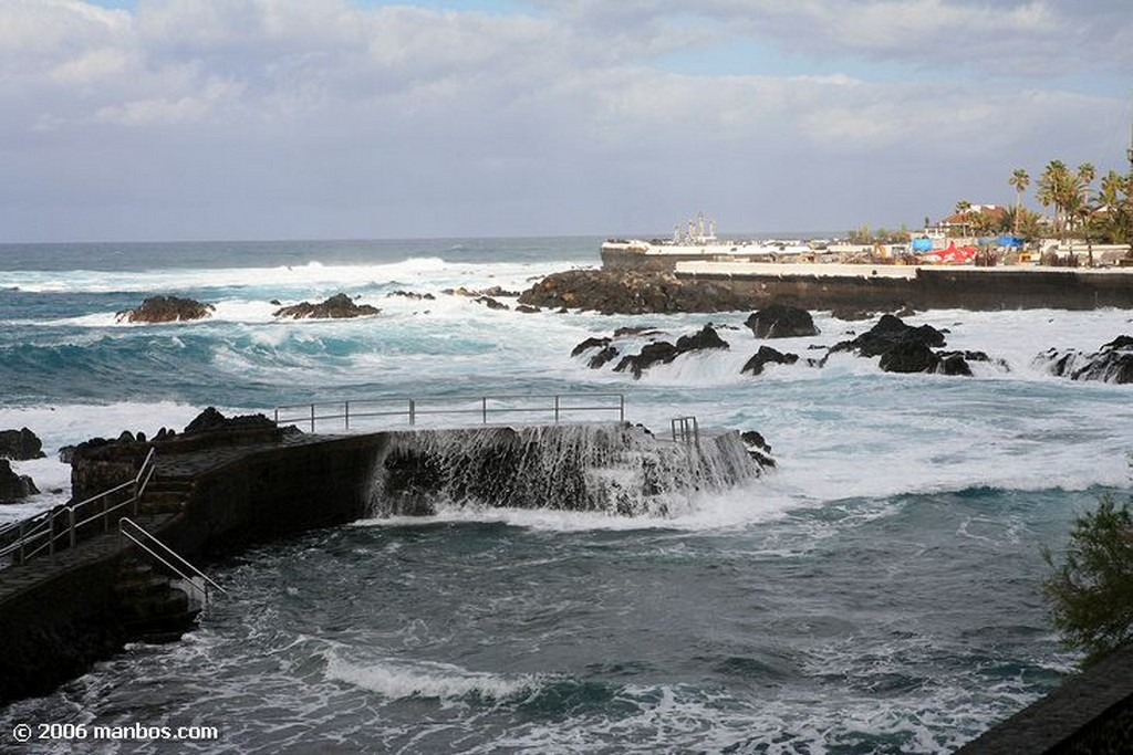 Tenerife Ave del paraiso Canarias
