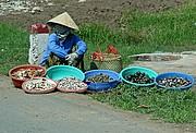 My Tho, My Tho, Vietnam
