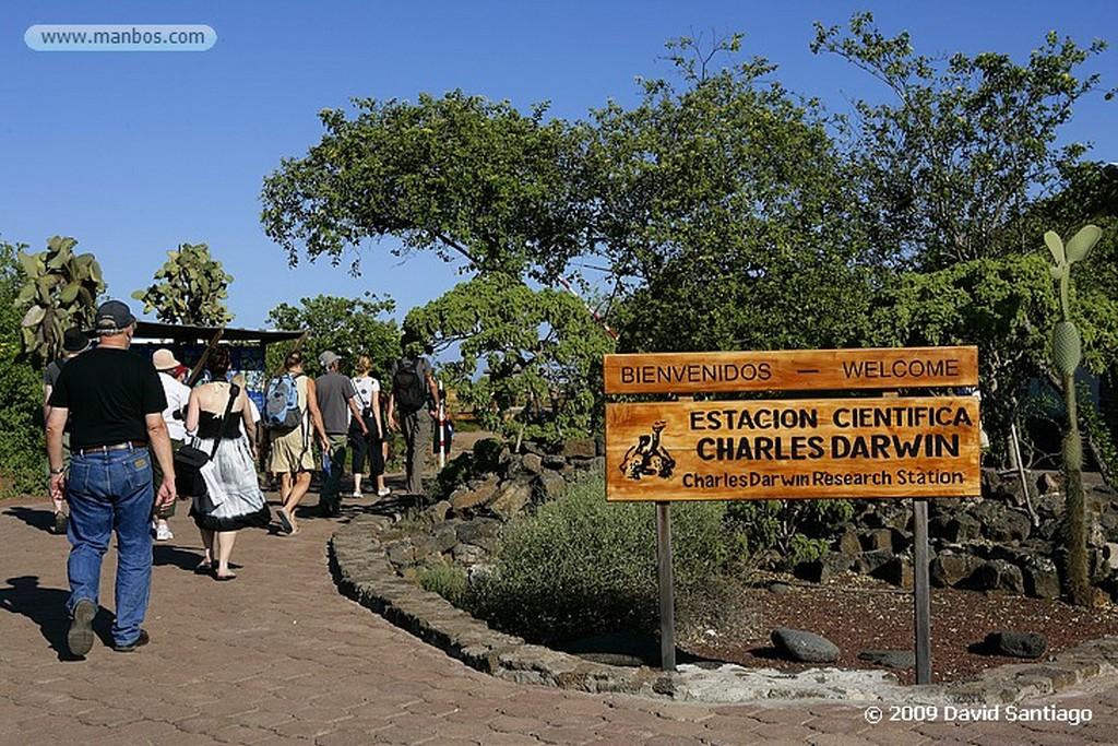 Islas Galapagos Estación biologica Charles Darwin Santa Cruz Galápagos Islas Galapagos