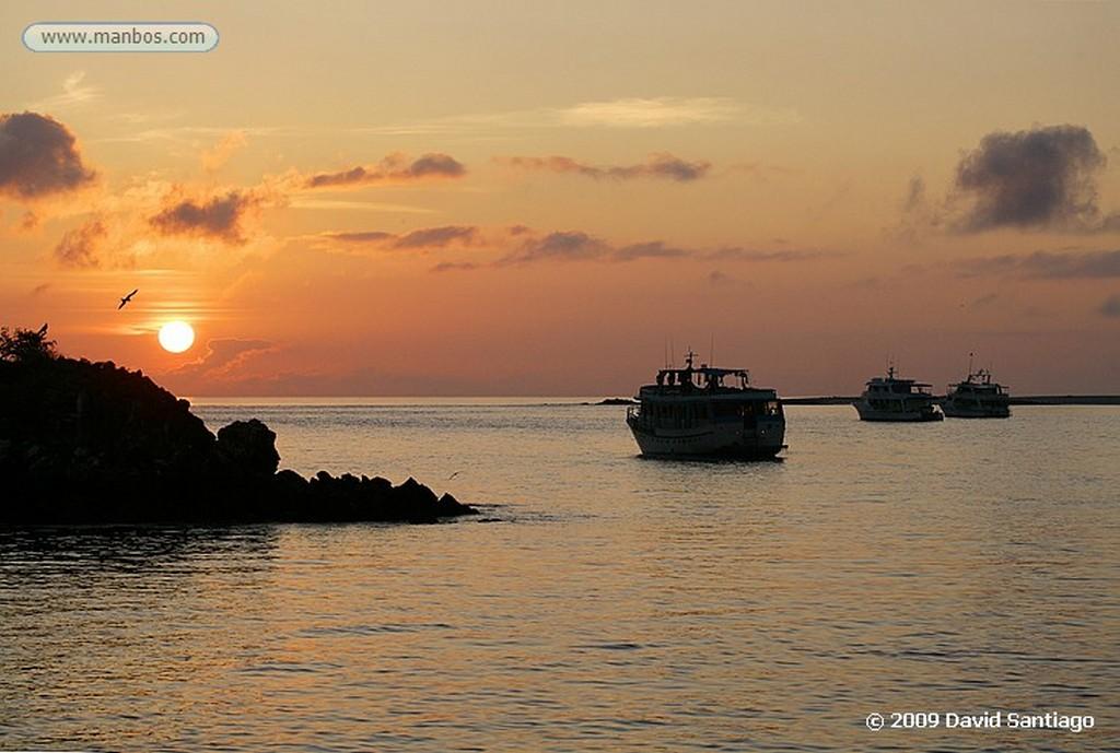 Islas Galapagos Isla Seymour Galapagos Islas Galapagos