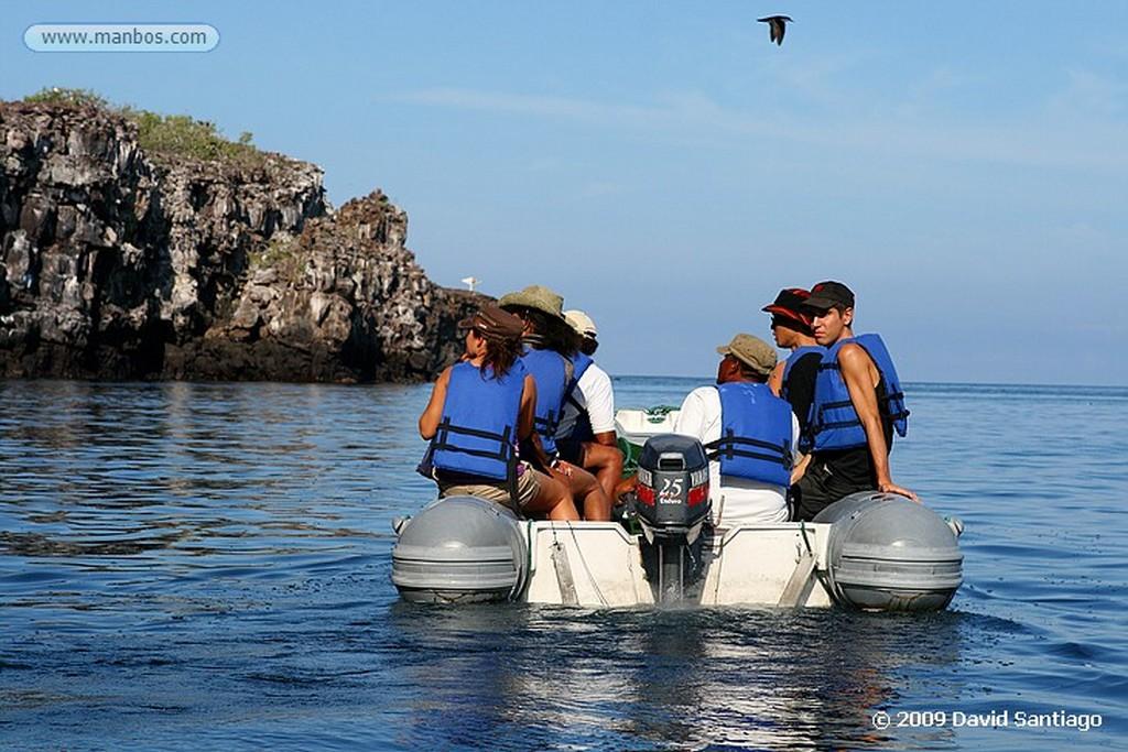 Islas Galapagos Barco Golondrina Isla Genovesa Galápagos Islas Galapagos