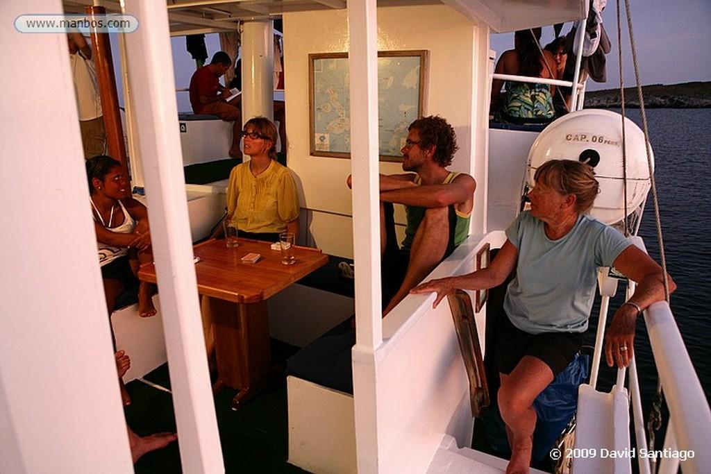 Islas Galapagos Avistamiento de tortugas en Caleta Negra Santa Cruz Islas Galapagos