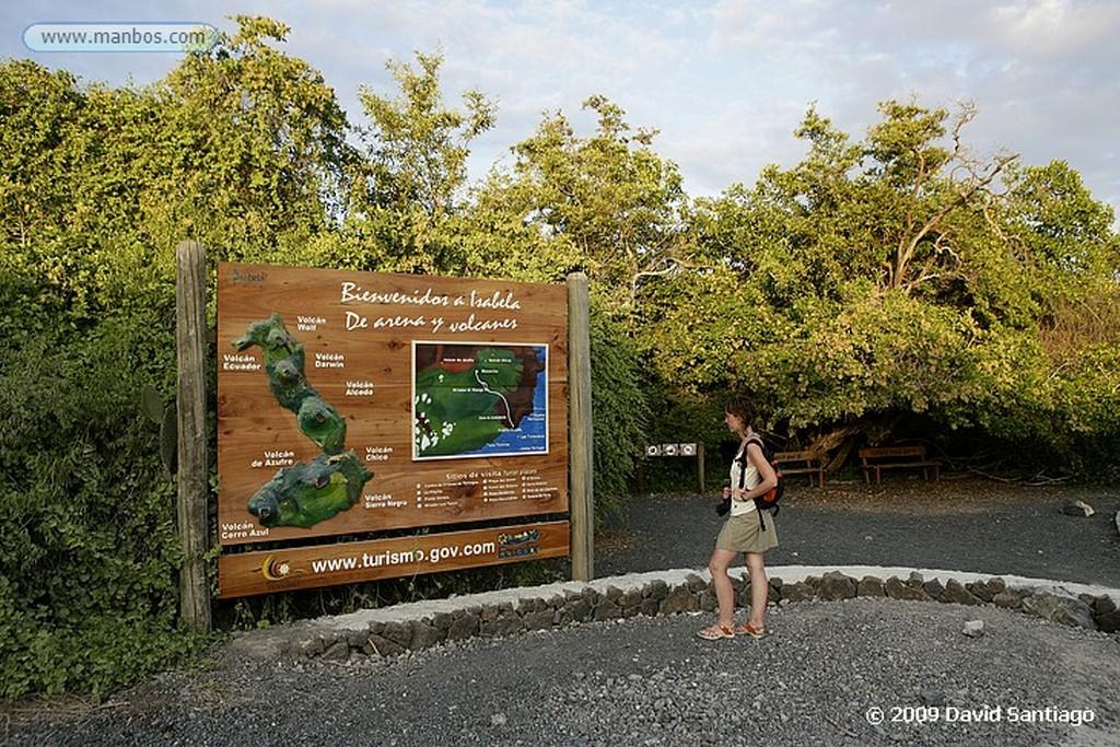 Islas Galapagos Puerto Villamil Isabela Galápagos Islas Galapagos
