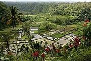 Rendong, Bali, Indonesia