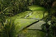 Gunnung Kawi Tampaksiring, Bali, Indonesia