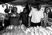 Mercado de Peces, Costa do Sol, Mozambique