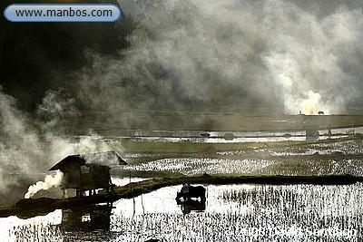 Quema de arroz al atardecer, Sulawesi