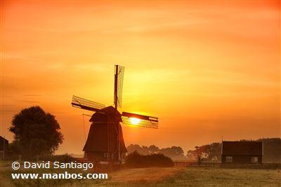 Molino típico de Holanda