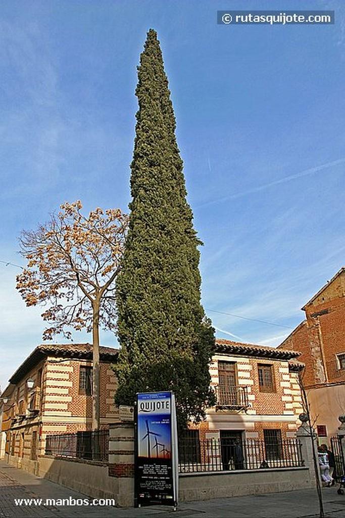 Alcala de Henares Cigueñas en la torre del Ayuntamiento Madrid