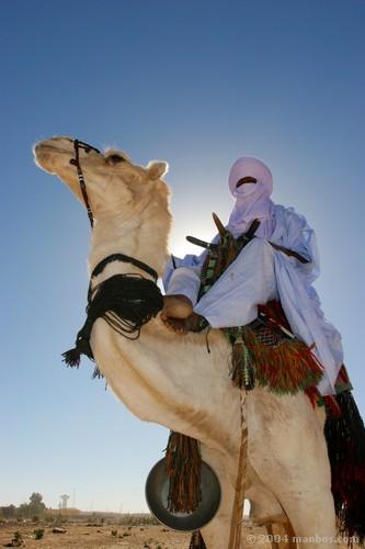 Tuareg de Tamanrassett