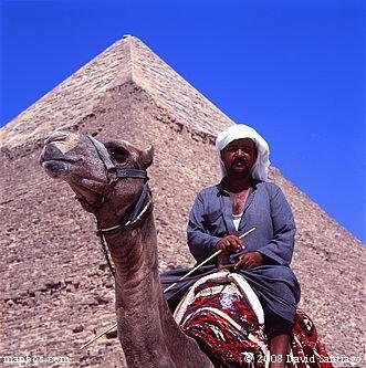 Camellero frente a la piramide