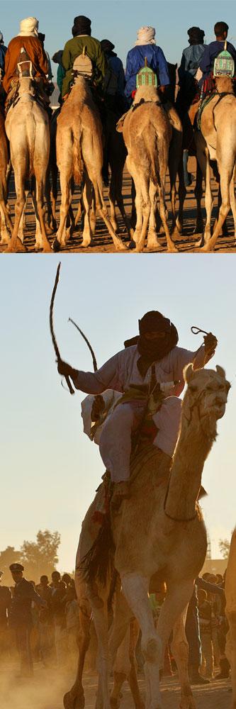 Carreras de camellos en Tamanraset