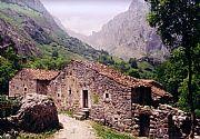 Camara Ricoh casita del Puebl ode Bulnes Miguel Alberich BULNES Foto: 17099
