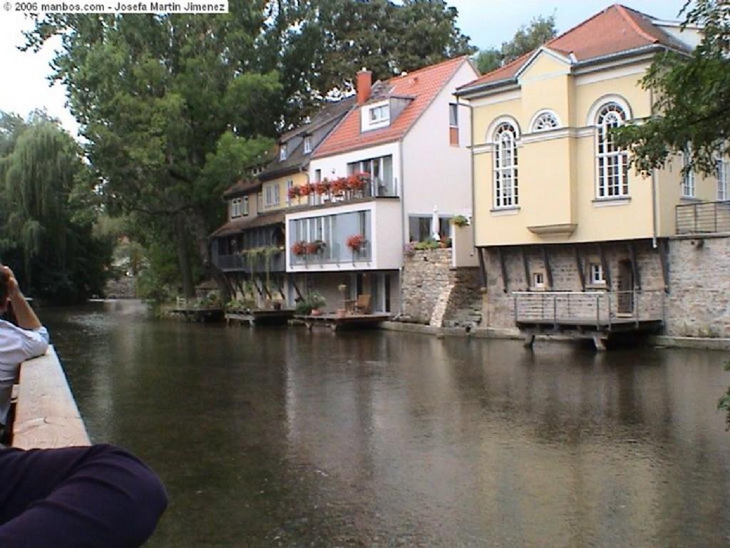 Erfurt Rosas y avispa Erfurt Turingia