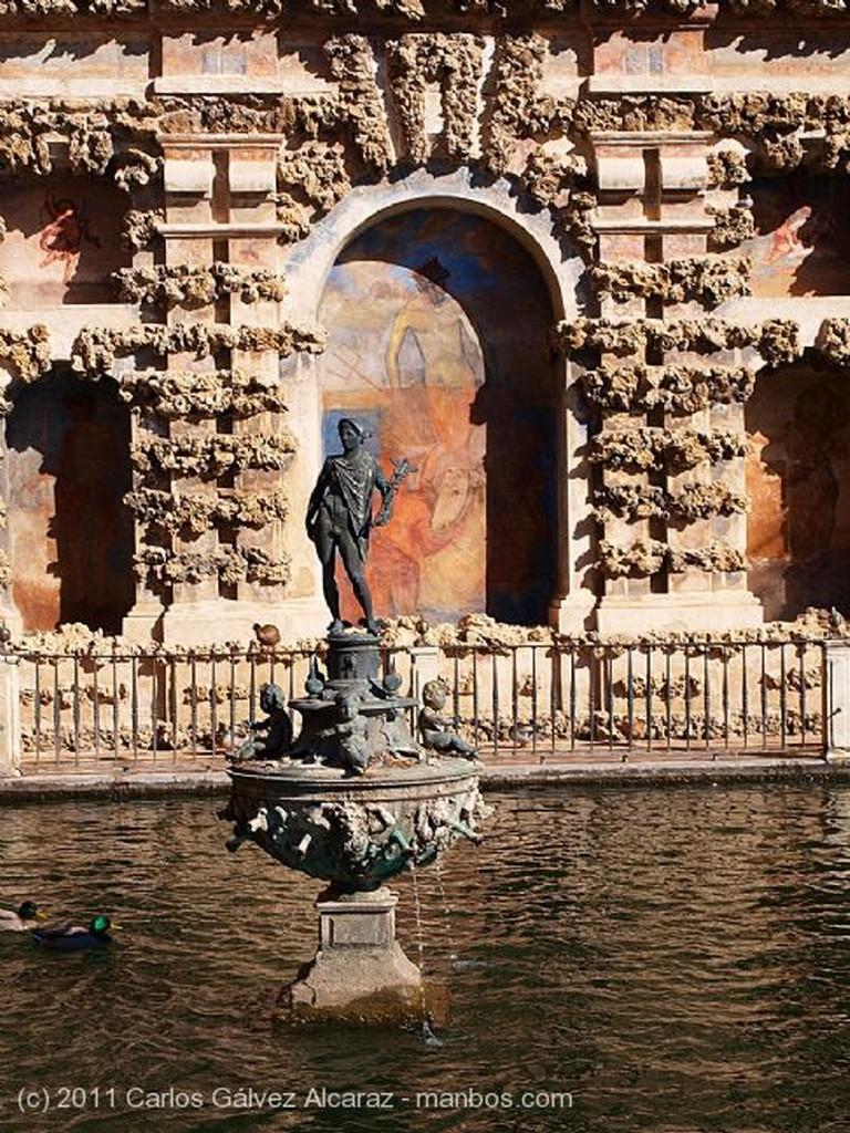 Sevilla Jardín. Sevilla