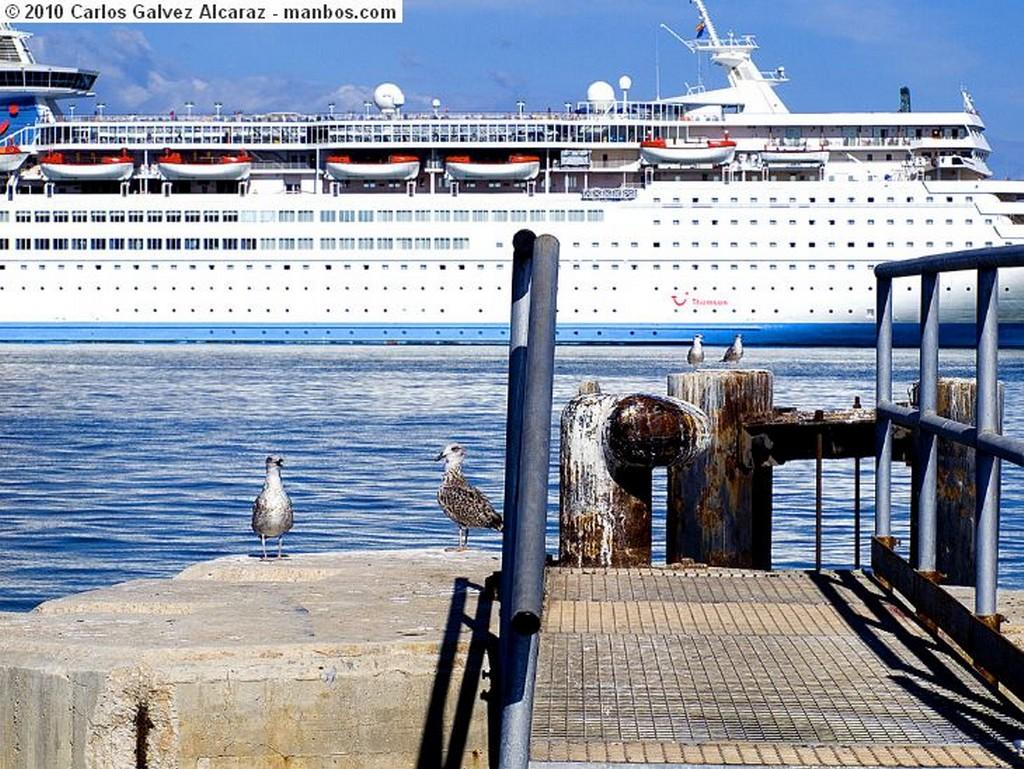Malaga Pesca Malaga
